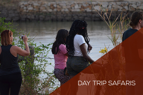 Day Trip Packages